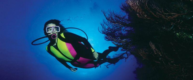 1bbf3e88b1_suba-diving