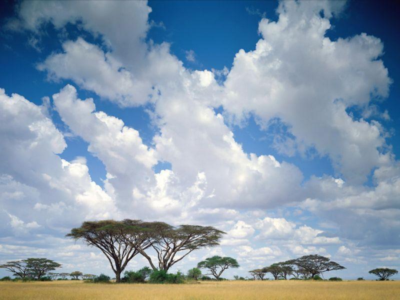 da68f4cdb3_kenia-1-